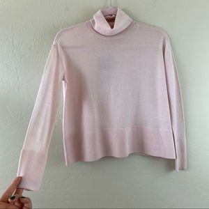 Everlane Pink Wool Knit Turtle Neck Sweatshirt Top